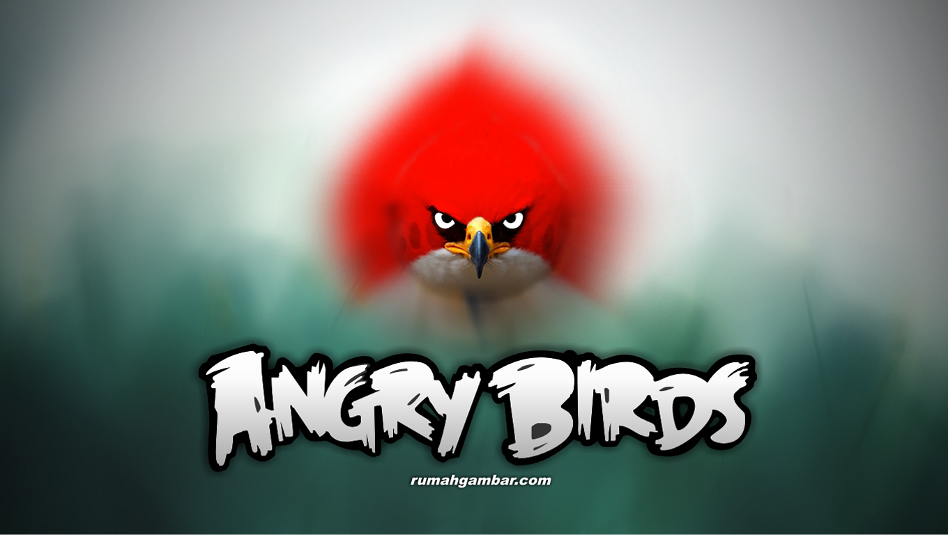 angry birds wallpaper 10 - photo #31